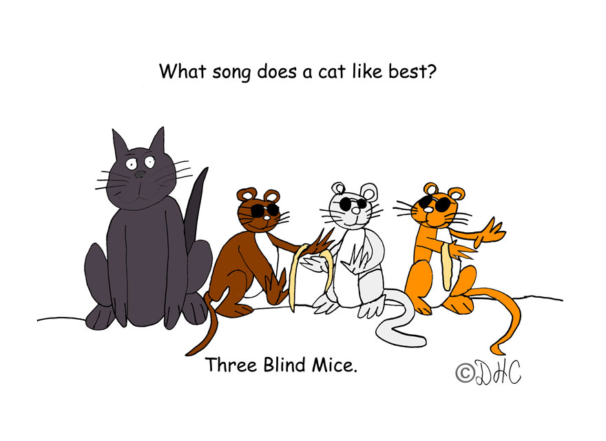 Cat3BlindMice2