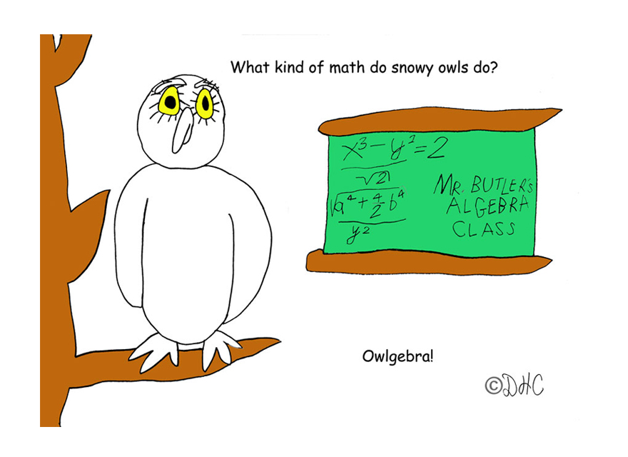 OwlAlgebraB
