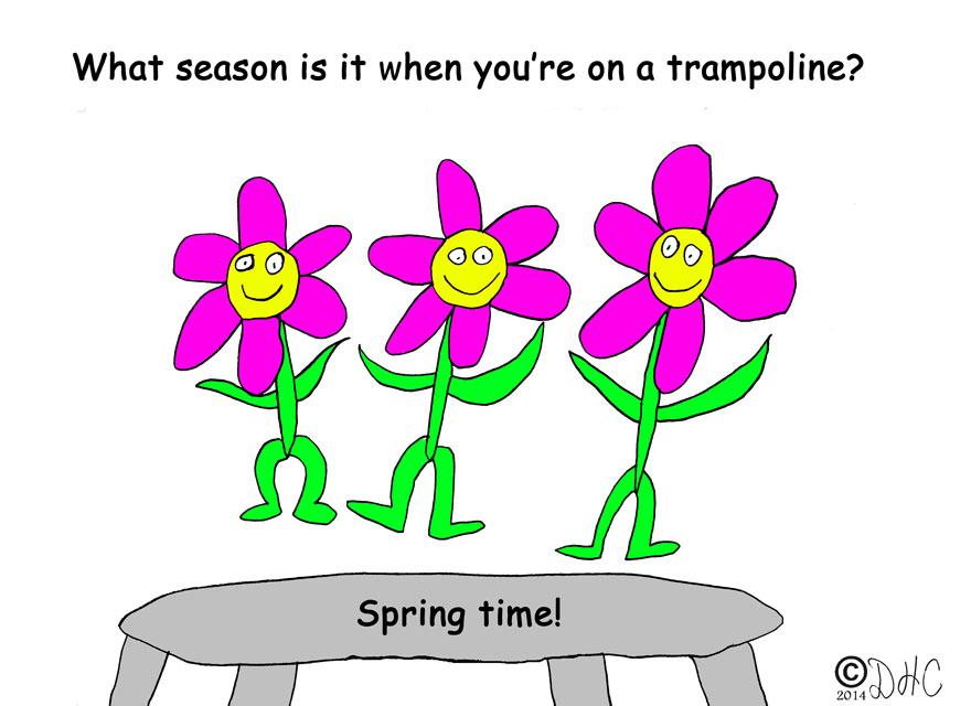 SpringTrampoline
